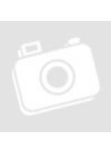 https://klett.hu/erettsegi-magyar-2017