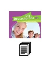 Die Deutschprofis B1 - Tanmenetjavaslat