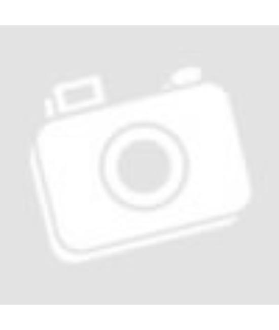 Érettségi Angol Tematikus feladatgyűjtemény az emeltszintű érettségihez